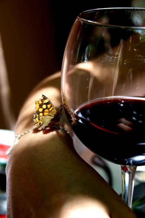 ett glas rödvin och en fjäril